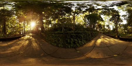 Spherical, 360 degrees seamless panorama of Monkey Forest sanctuary in the city of Ubud at sunny morning. Bali, Indonesia