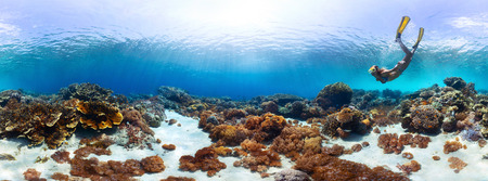 bottom of sea: Underwater panorama of the young lady snorkeling over vivid coral reef in tropical sea. Bali Barat National Park, Indonesia Stock Photo
