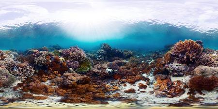 4541 球、鮮やかなサンゴ礁の 360 度シームレスな水中パノラマ。バリ バラット国立公園、インドネシア