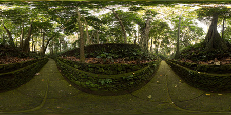 Spherical, 360 degrees seamless panorama of Monkey Forest sanctuary in the city of Ubud. Bali, Indonesia