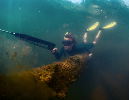freediving: Young lady spearfishing in the pond using breath hold