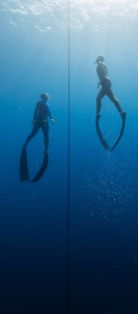 free diving: Two freedivers ascending from the depth using fins. Constant weight discipline