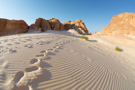 monte sinai: Desierto