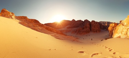 sinai desert: Desert Stock Photo