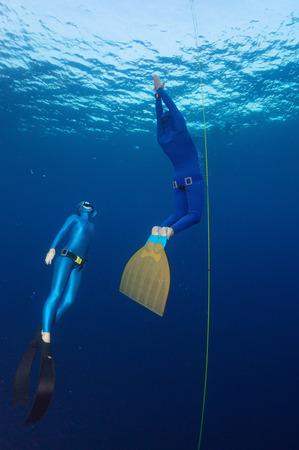 freediver: Freediver Stock Photo