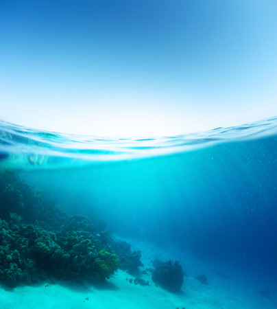 under the surface: Blue sea