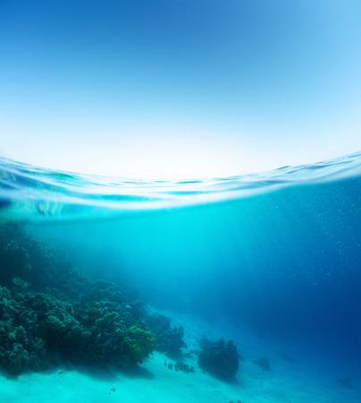 sea bottom: Blue sea