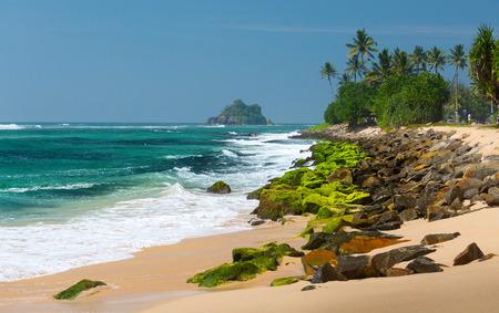 sri lanka: Sri Lanka landscape Stock Photo