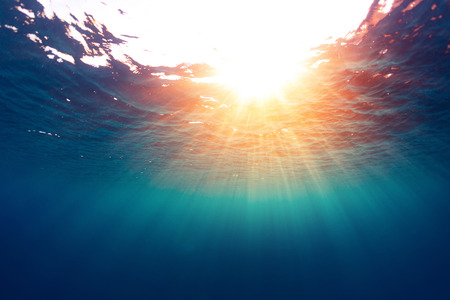 underwater: Sea with sun Stock Photo