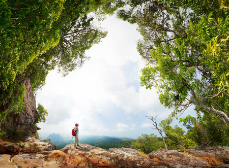 lush: Hiker with backpack standing on the rock surrounded by lush tropical forest Stock Photo