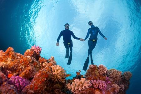 밝은 산호초를 미끄러지는 Freudivers. 홍해, 이집트 스톡 콘텐츠