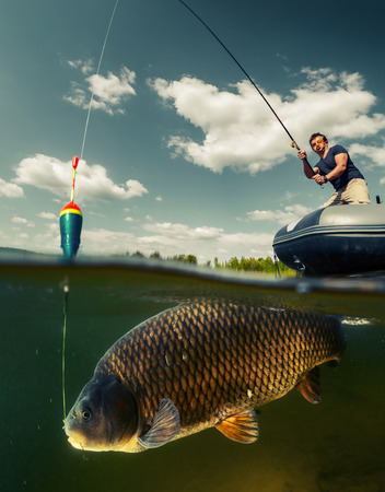 cyprinidae: Split shot of the fisherman with rod in the boat and underwater view of the big fish (Carp of the family of Cyprinidae)