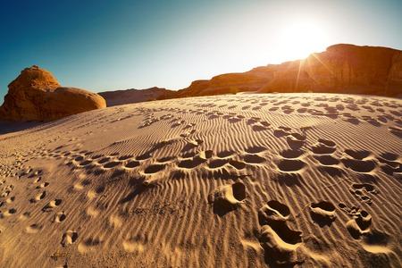 desierto: Impresiones del pie en el desierto al atardecer, Sina�, Egipto