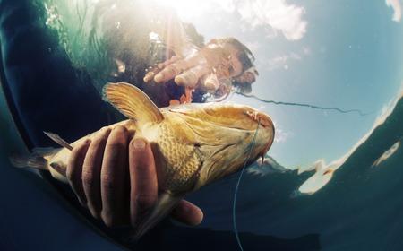 Tiro subaquático do pescador segurando o peixe Imagens