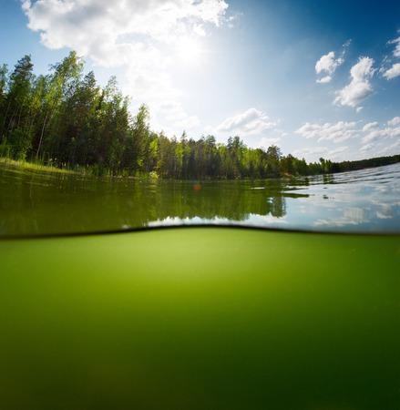 森の上に表面およびまぶしさの空背景は水中で淡水池のショットを分割します。