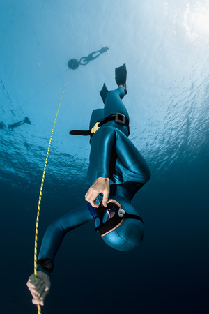 freediver: Lady freediver descending along the rope. Free immersion discipline