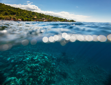 submerge: Split shot with hilly tropical terrain on the surface and reef underwater
