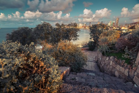 yafo: The city of Tel Aviv at twilight. Israel