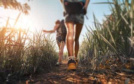 Hikers walking through the meadow with lush grass at sunny hot day Banque d'images