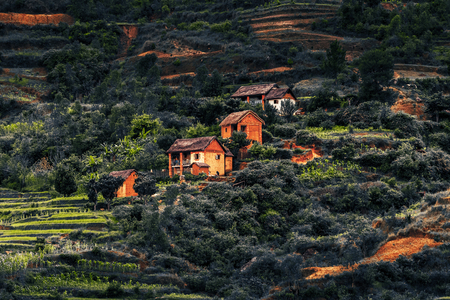 Houses on the hill with green gardens and red soil. Madagascar