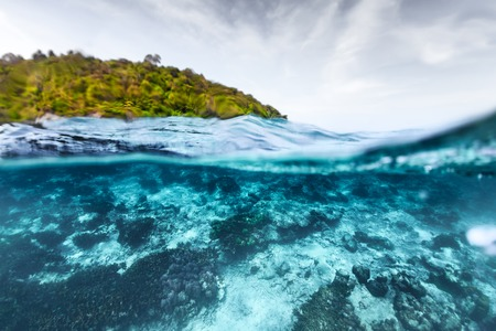 ocean water: Underwater split shoot of a tropical sea with coral reef and green island on the surface