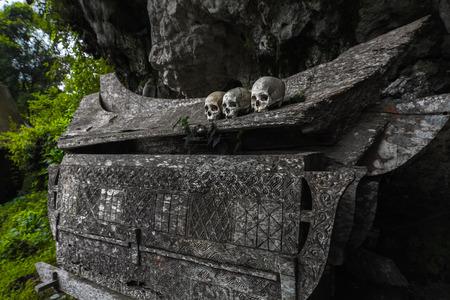 trumna: Drewniana trumna z czaszkami w tradycyjnym cmentarzu Tana Toraja w lesie. Wyspy Sulawesi, Indonezja Zdjęcie Seryjne