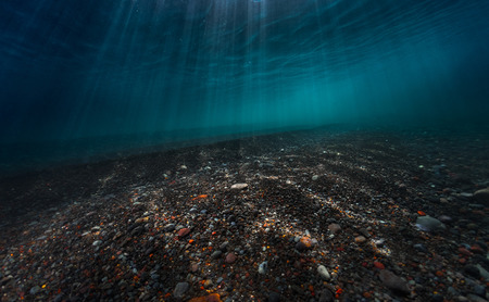 submerge: Underwater view of the sea surface with sunbeams and bottom with gravel