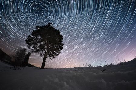 Sternspuren auf einem Winterhimmel und Kiefer in einem schneebedeckten Feld