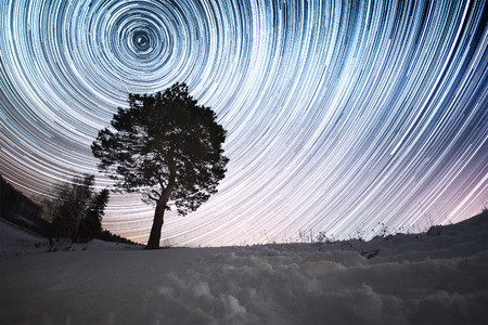 time lapse: Star trails in a winter sky and pine tree in a snowy field Stock Photo