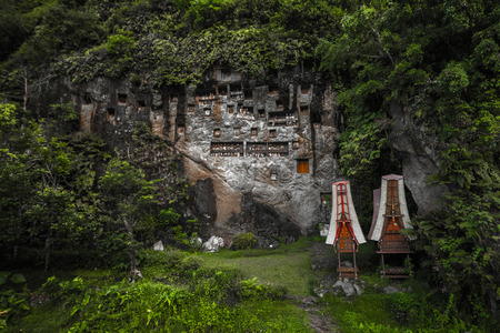 Tana Torajas traditional cemetery in a rocky wall in a forest. Sulawesi island, Indonesia