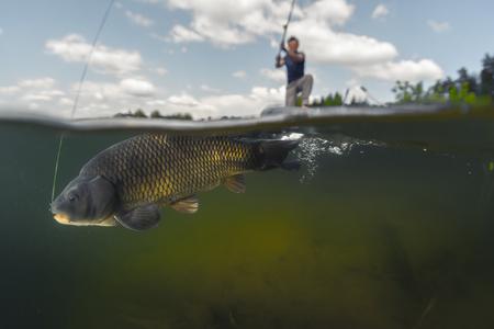 Tiro partido de la pesca del hombre en el lago con vista bajo el agua de los peces. Centrarse en los peces sólo se Foto de archivo