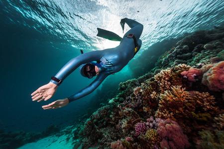 buceador nada bajo el agua sobre los arrecifes de coral vivo. Mar Rojo, Egipto