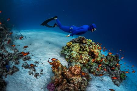 Free diver swimming underwater over vivid coral reef. Red Sea, Egypt Archivio Fotografico