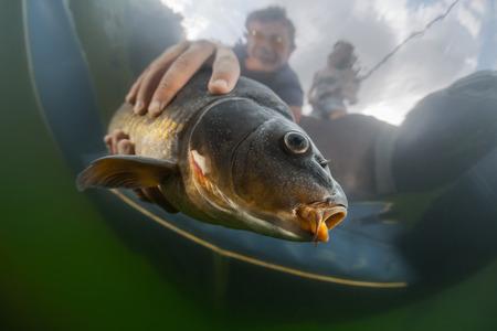 barca da pesca: Colpo subacqueo di un uomo che tiene il pesce Archivio Fotografico