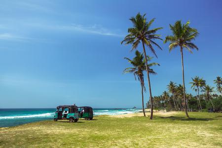 rikscha: Zwei Rikscha Aufenthalt auf dem Ozean Ufer mit Palmen