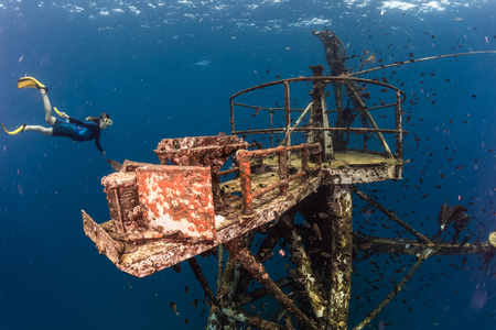 ship wreck: Free diver exploring the ship wreck in tropical clear sea