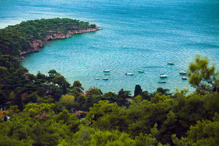 marmara: Rocky cape with forest of one of the Prince Islands. Turkey
