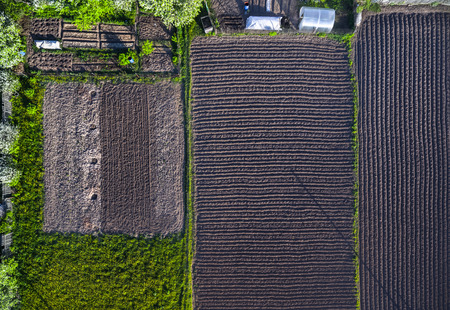 greem: Aerial shot of the cultivated field