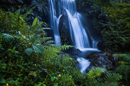tropical forest: Waterfall in tropical forest