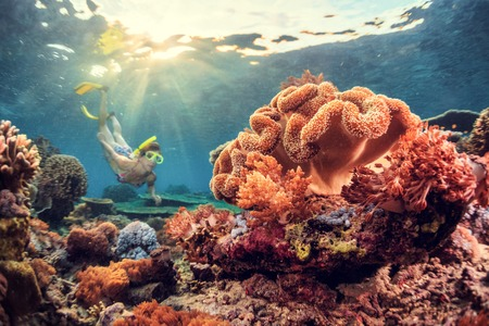 Young lady snorkeling over coral reef in the tropical sea. Bali island Archivio Fotografico