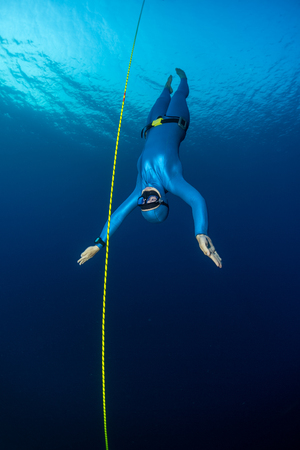 freediving: Lady freediver descending along the rope. Free immersion discipline