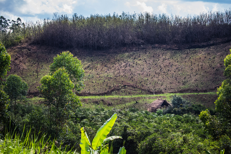 madagascar: Deforestation in the Madagascar. Africa Stock Photo