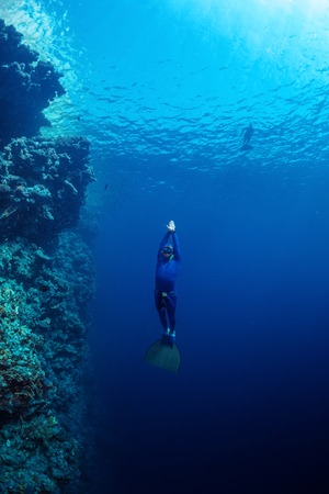 free diver: Free diver ascending along the coral reef wall in the tropical sea