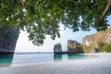 huge tree: Huge mountains with branches of tree on island of Koh hong, Krabi province, Thailand Stock Photo