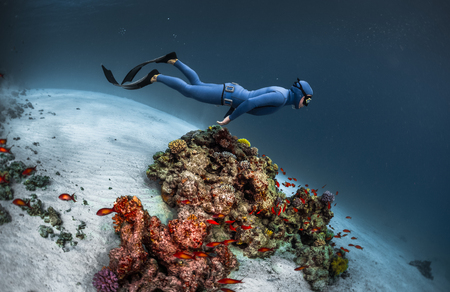 freediving: Freediver gliding underwater over vivid coral reef Stock Photo