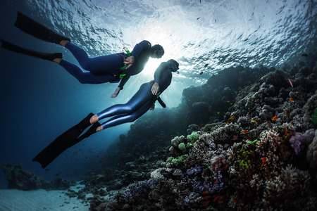deep sea diver: Two freedivers swimming underwater over vivid coral reef. Red Sea, Egypt