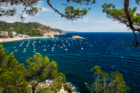 plants and trees: Sea and anchored boats, view through the plants and trees, Town of Tossa de Mar, Spain