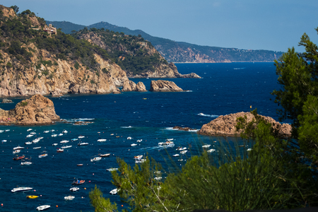 plants and trees: Shot of the sea and anchored boats through the plants and trees, Tossa de Mar, Spain