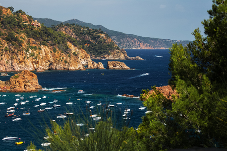 plants and trees: Sea and anchored boats through the plants and trees, Tossa de Mar, Spain Stock Photo