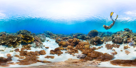 Spherical, 360 degrees, seamless panorama of the lady freediver exploring the sea floor with corals Archivio Fotografico